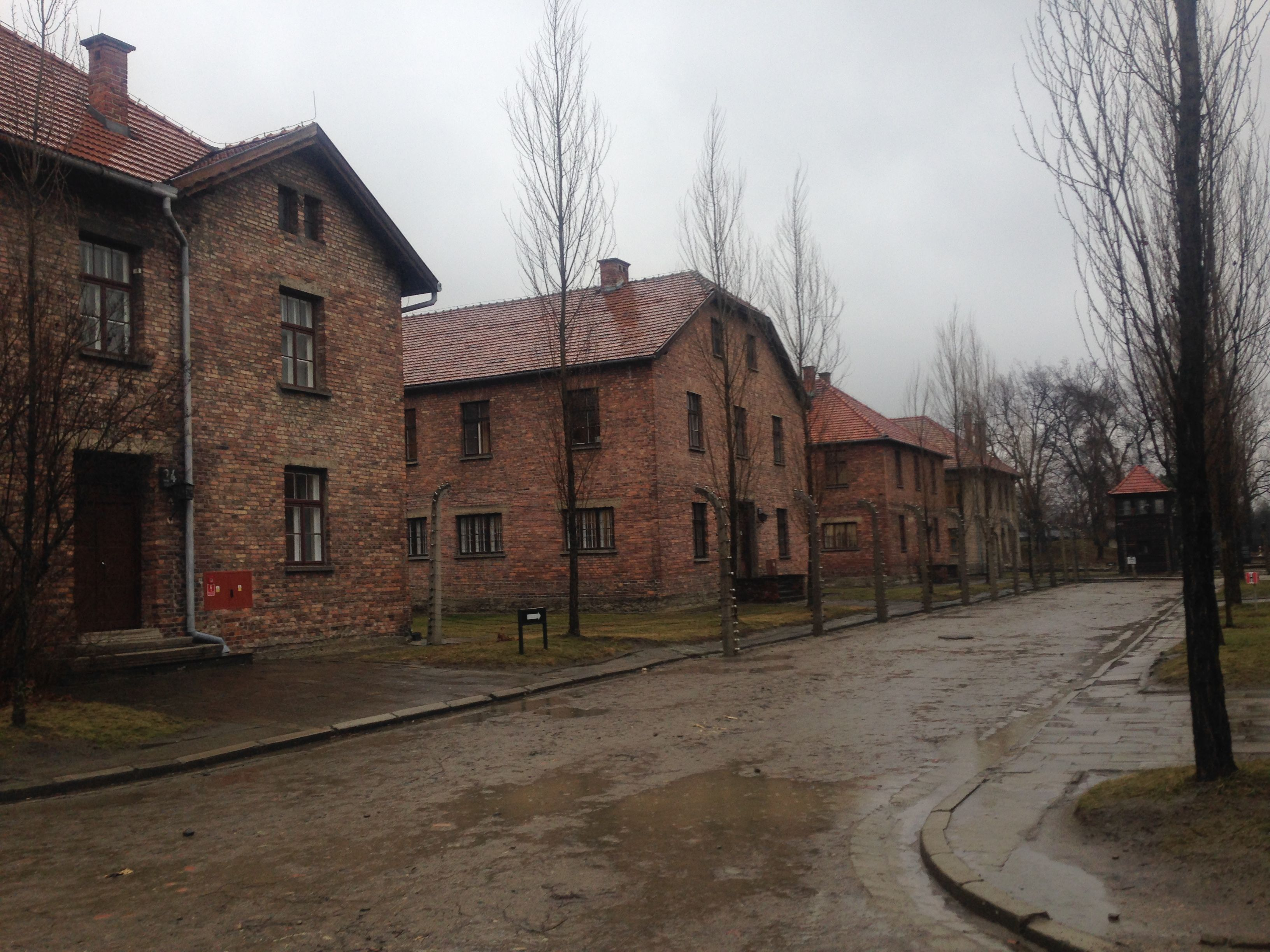 Visitar Auschwitz