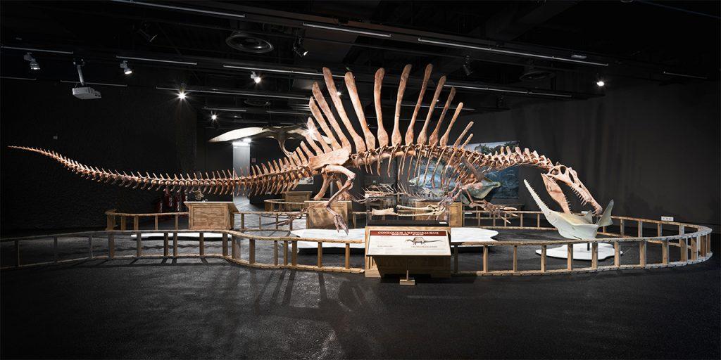 Museo de Ciencias Naturales Barcelona